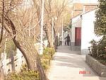 江南蜜月之旅(四):南京、扬州、镇江、上海纪行(附攻略)