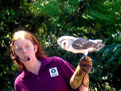 Healesville Sanctuary 野生动物避难所