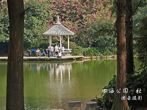 深圳 四海公园的春夏秋冬
