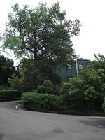 台湾行 PART 5 2008/7/30