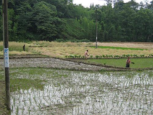 四川灾区正在恢复生产