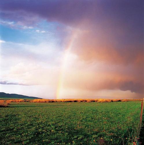 相册视频-陪你一起看草原