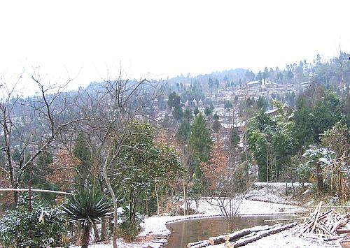07年拍的老家雪景