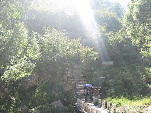 光之国度——泰山