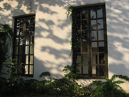 9月28日:乌镇_望佛酒店