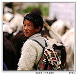 目标拉萨穿越之旅(8月20日-21日)拉萨--羊卓雍湖--拉萨