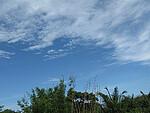 蓝天与大海的PP