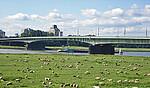 德国北威州杜塞尔多夫红衣主教约瑟夫弗林斯大桥