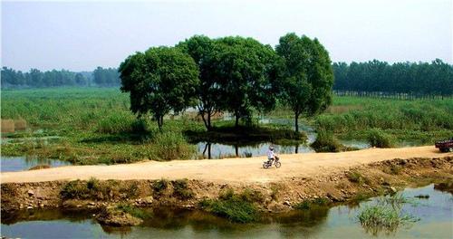 风雅若诗:论台儿庄运河湿地公园建设