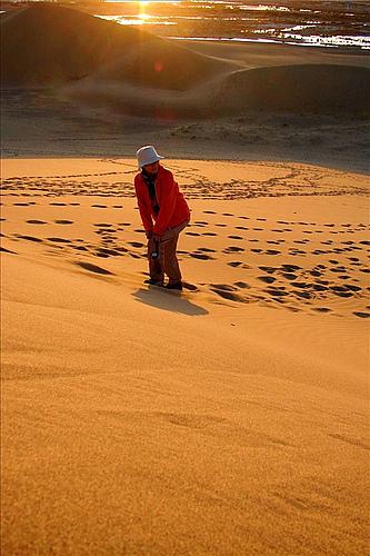 西游漫记之三:额济纳的沙漠黄昏