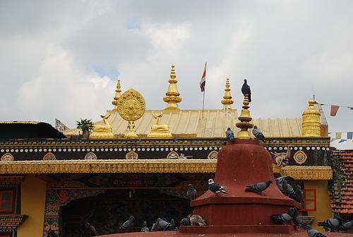 走近尼泊尔(三)