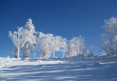 2011穿越雪乡