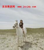2011五一万人北京京西草原康西草原骑马活动抢票进行中