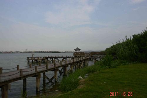 海岸边的木栈道也是一道美丽的风景线——厦门园博苑