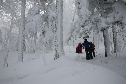 东升林场雪谷景区两日游