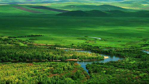 呼伦贝尔草原,莫日格勒河深处,原生态之旅、