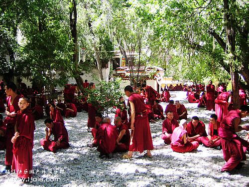 活动召集:穿越滇藏加稻城亚丁拉萨十二日游【西 藏 神 韵 之 旅】9月23号