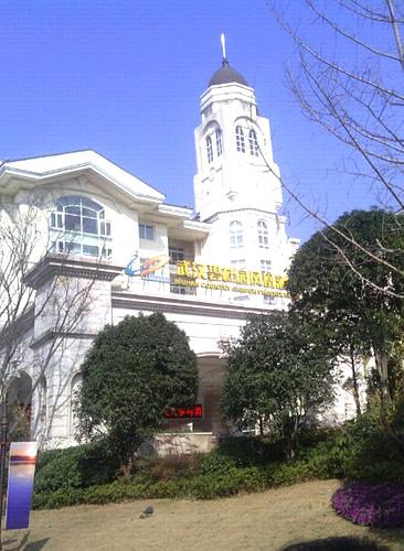 湖北武汉汉南碧桂园凤凰酒店