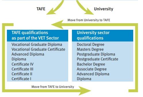 小耄澳洲留学心得(一):澳洲留学常见课程类别及基本入学要求--TAFE教育