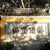 【祈福求子】普陀山二日跟团游<可自行前往慧济寺>