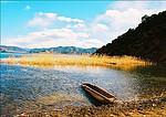 夏季游泸沽湖的注意事项