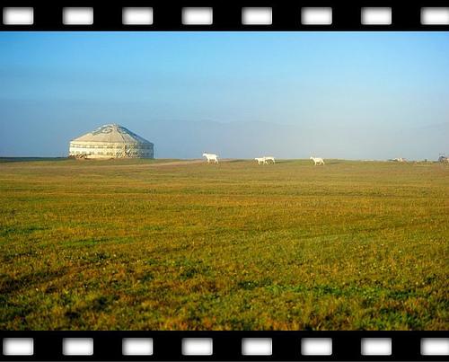 乌兰布统草原美景