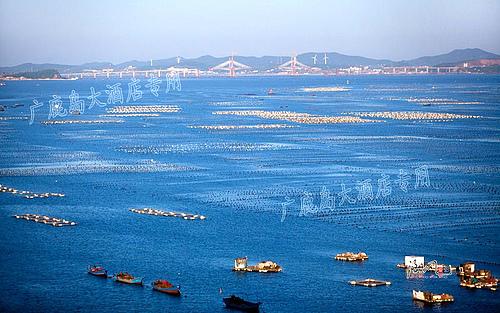 2014年大连市长海县广鹿岛旅游攻略
