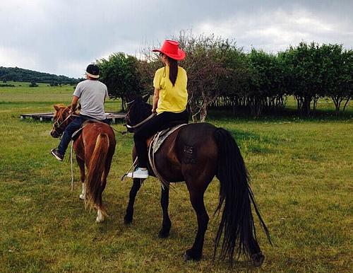七夕走进梦中的乌兰布统草原骑马吧 感受马背上情人节的乐趣