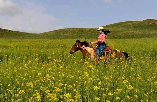铁马组织北京马友骑马穿越草原深处