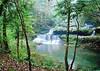 铜锣坝国家森林公园