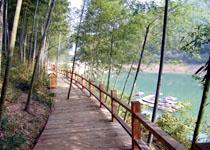 瓦屋山森林公园