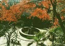 芦花荡公园