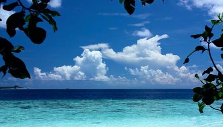 马尔代夫四晚六日游 菲哈后岛,4晚沙滩屋,含早晚餐图片